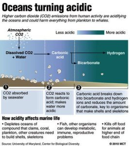 OceanAcidification is the cost of absorbing atmospheric CO2, lowering the thermostat.