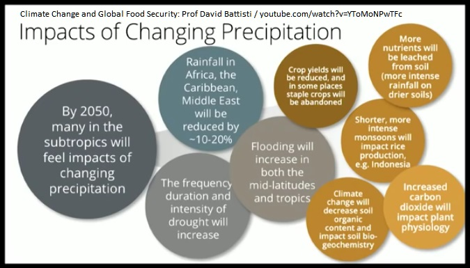 Consequences of Shifting Precipitation